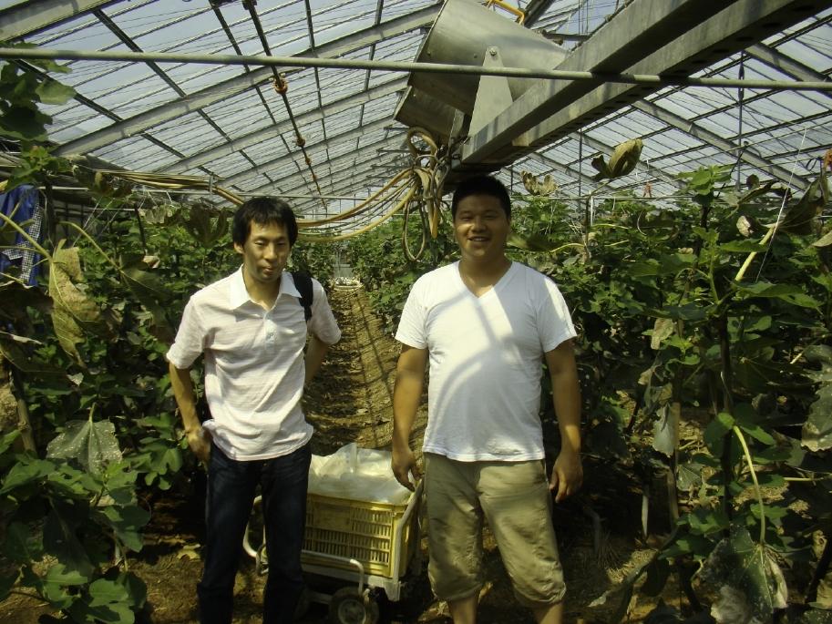 三州フルーツ工房・鈴木さんの畑でボランティア。